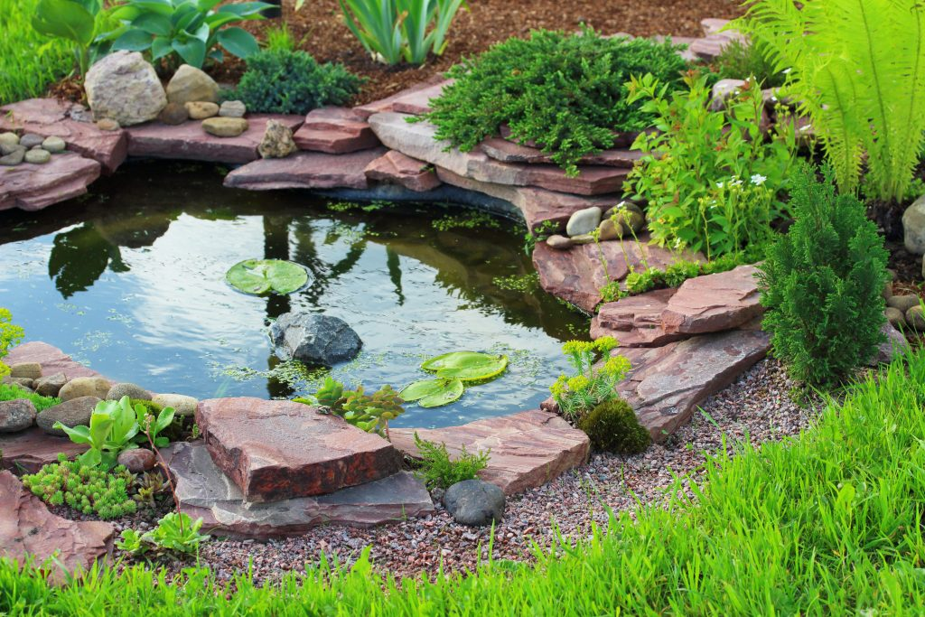 Plano Landscaping Gallery