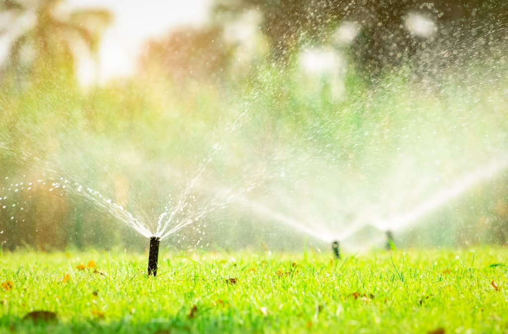 irrigation-services-plano