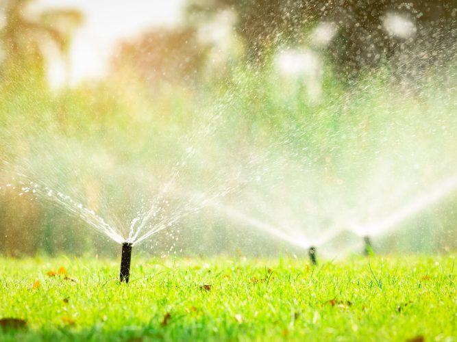 Irrigation & Draining Services