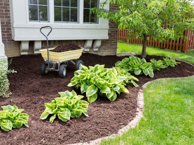 mulch options